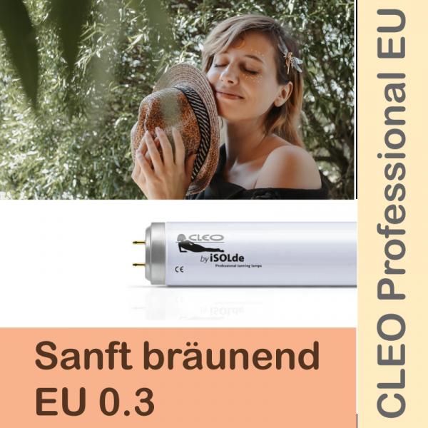 CLEO Professional EU 28 R 180W